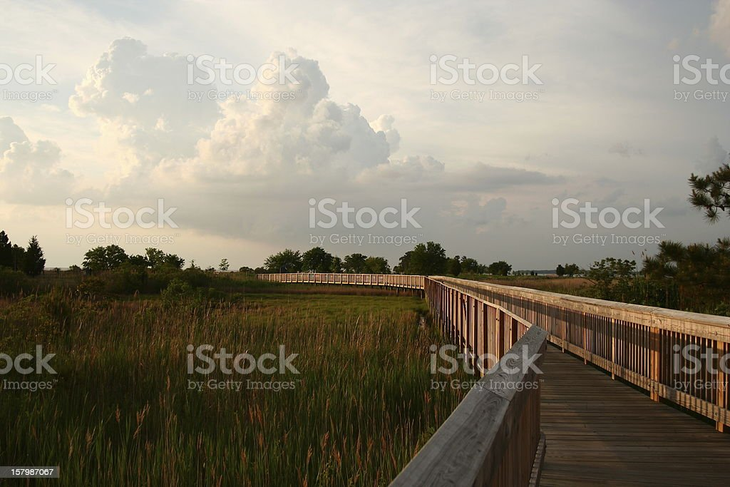 Walkway over wetlands stock photo