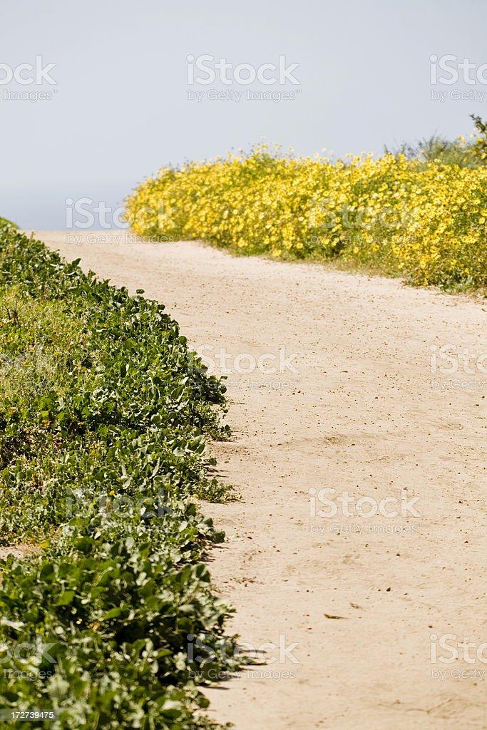 Walkway stock photo