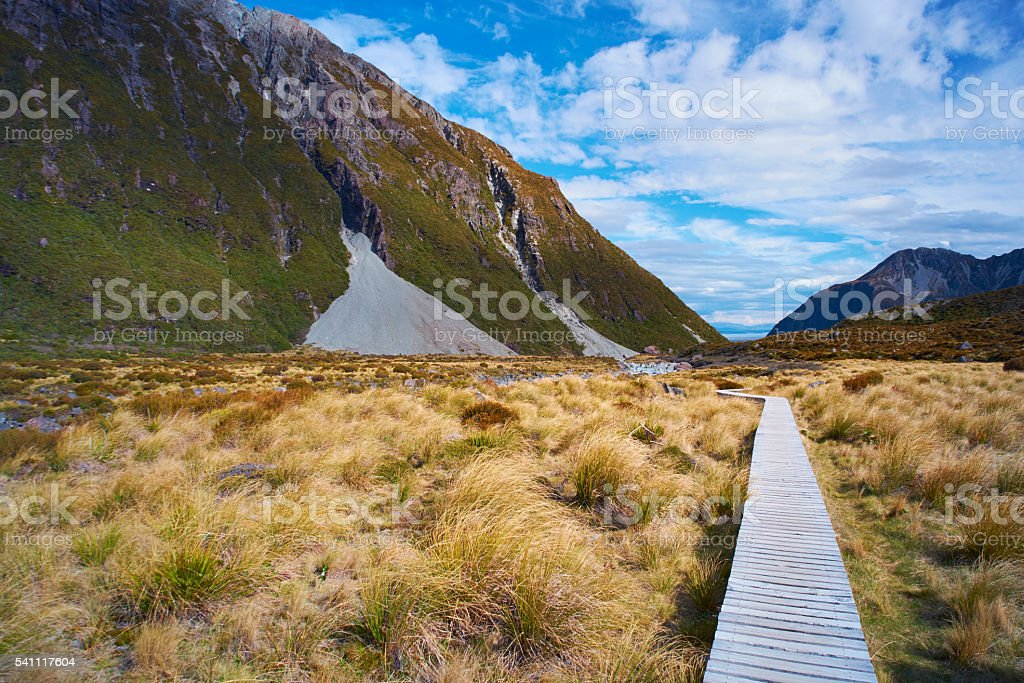Walkway Through The Mt Cook National Park In New Zealand stock photo