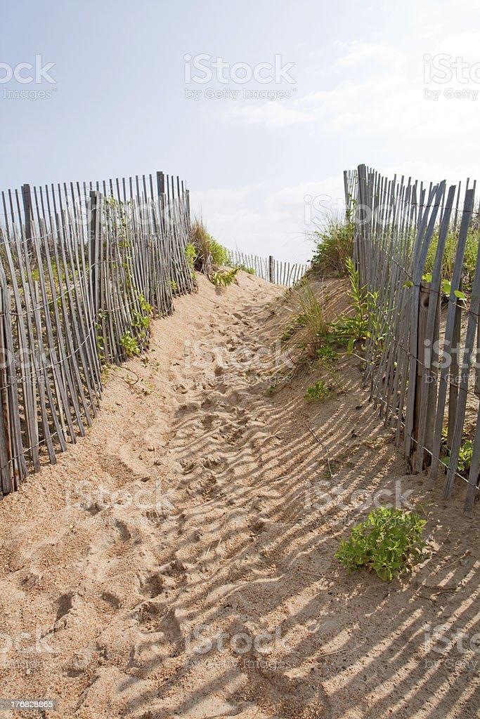 Walkway to a beach in North carolina vertical stock photo