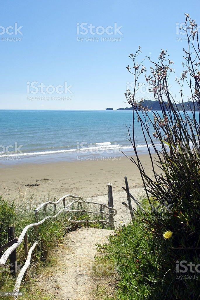 Walkway to Pohara Beach, Golden Bay, New Zealand stock photo