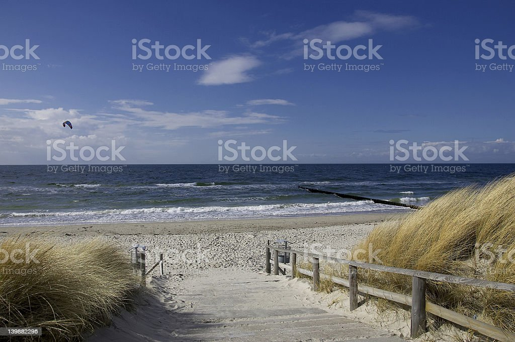 Walkway to the beach lined with sea grass stock photo