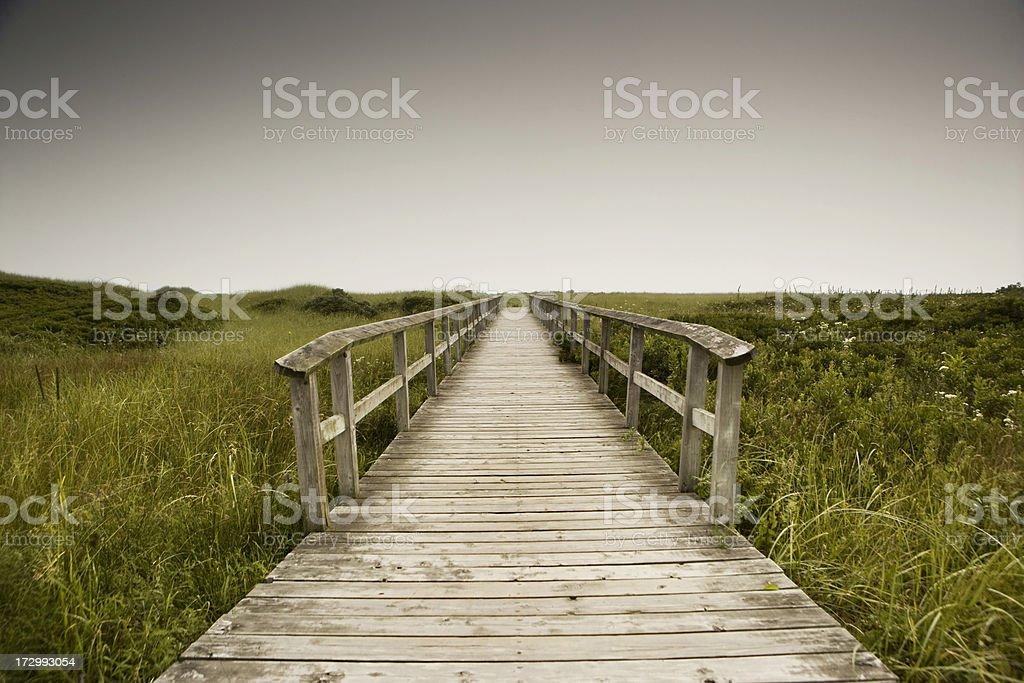 Walkway to the beach royalty-free stock photo