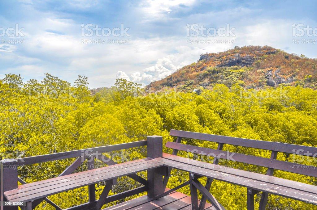 Walkway with wooden bridge through mangrove forrest stock photo