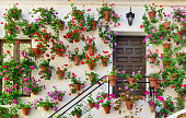 Wall decorations of flowers in Cordoba