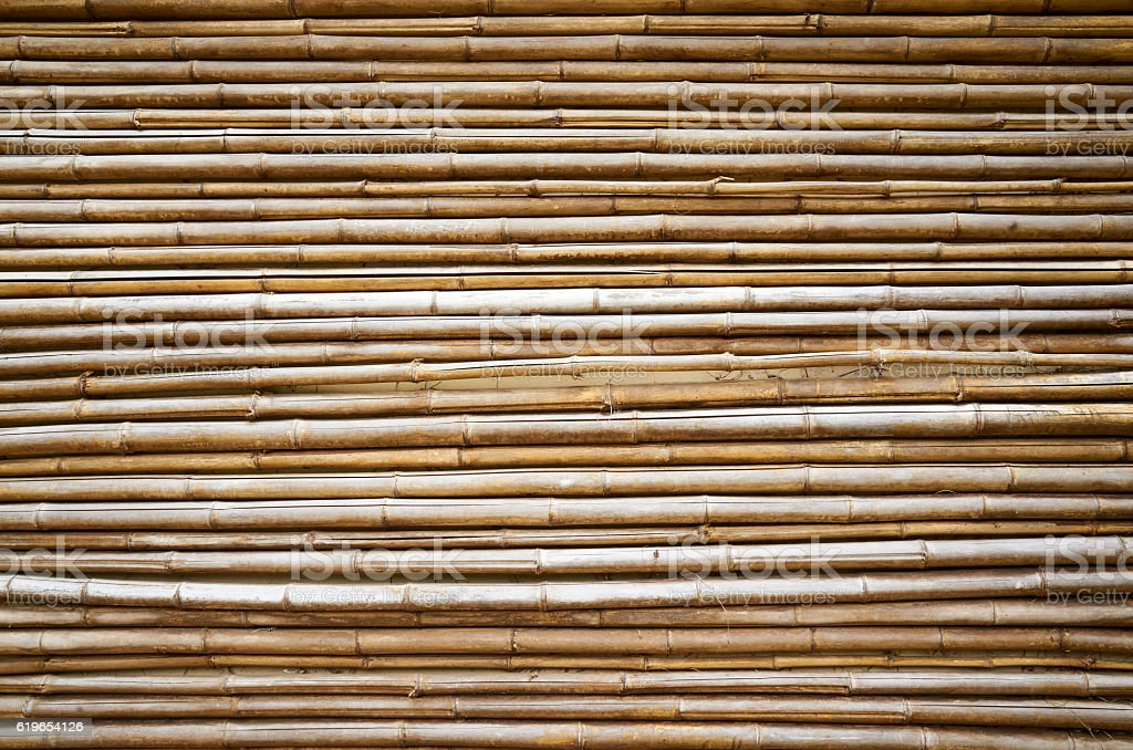Wall dried bamboo trunks background stock photo