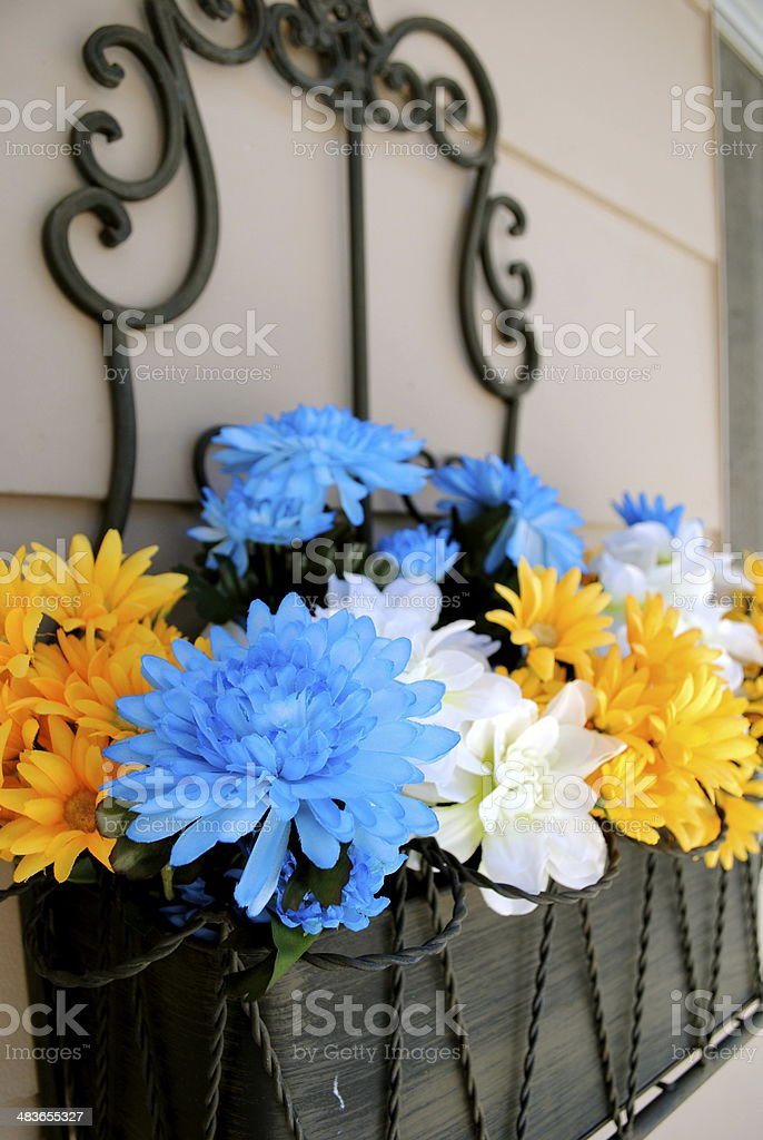 Wall Flowers royalty-free stock photo