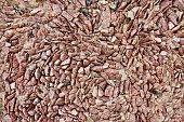Wall of brown granite gravel