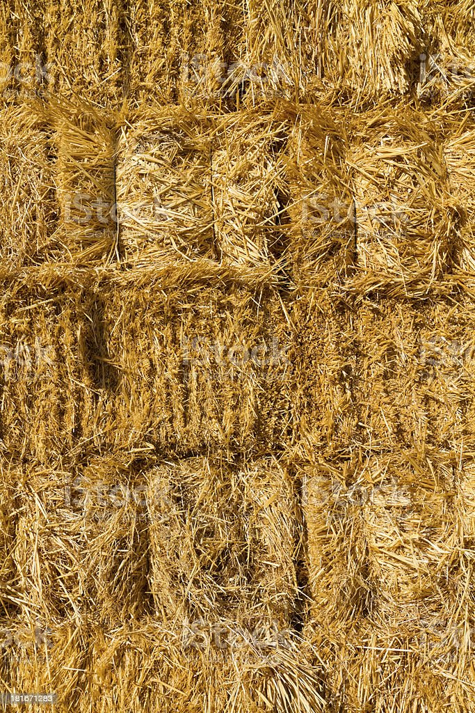 Wall of dried straw royalty-free stock photo