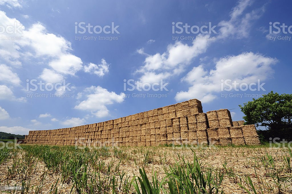 Wall of Straw stock photo