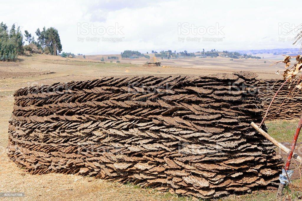 Wall of sundried cow dungs. Oromia-Ethiopia. 0525 stock photo