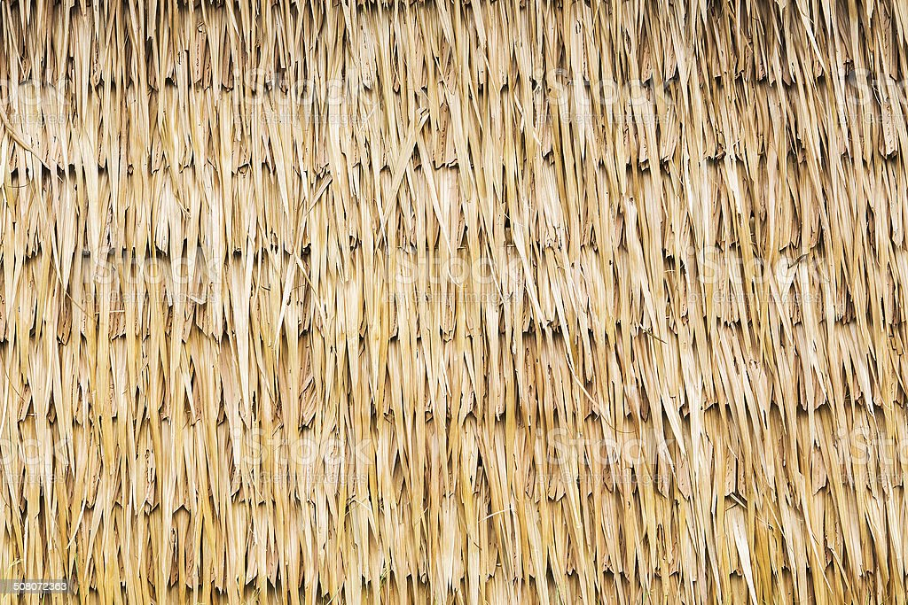 wall of Thai farmer cottage in countryside. stock photo