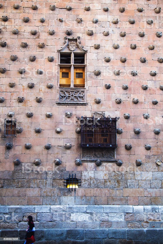 Wall of the 'Casa de las Conchas', salamanca, Spain stock photo