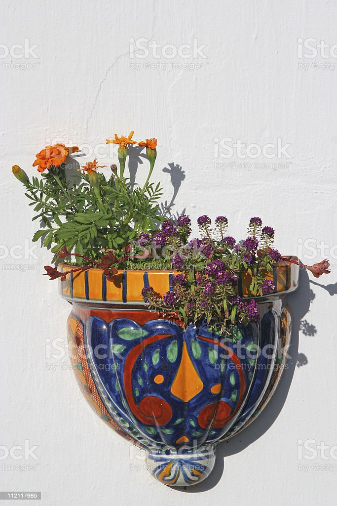 Wall Planter stock photo