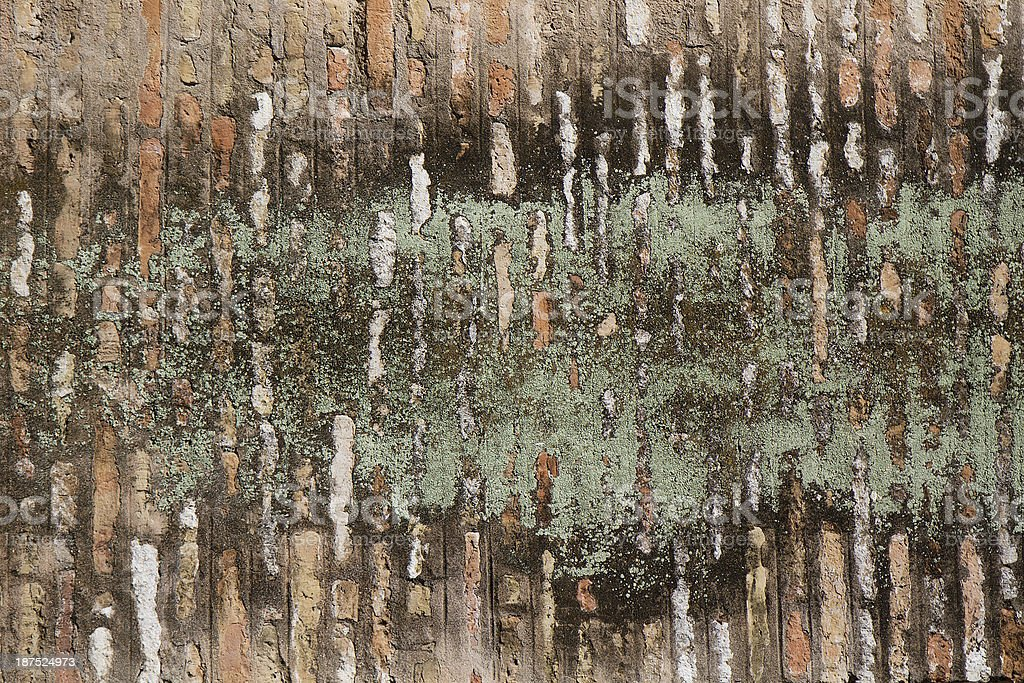 Wall texture. Green, brown, white, black background royalty-free stock photo