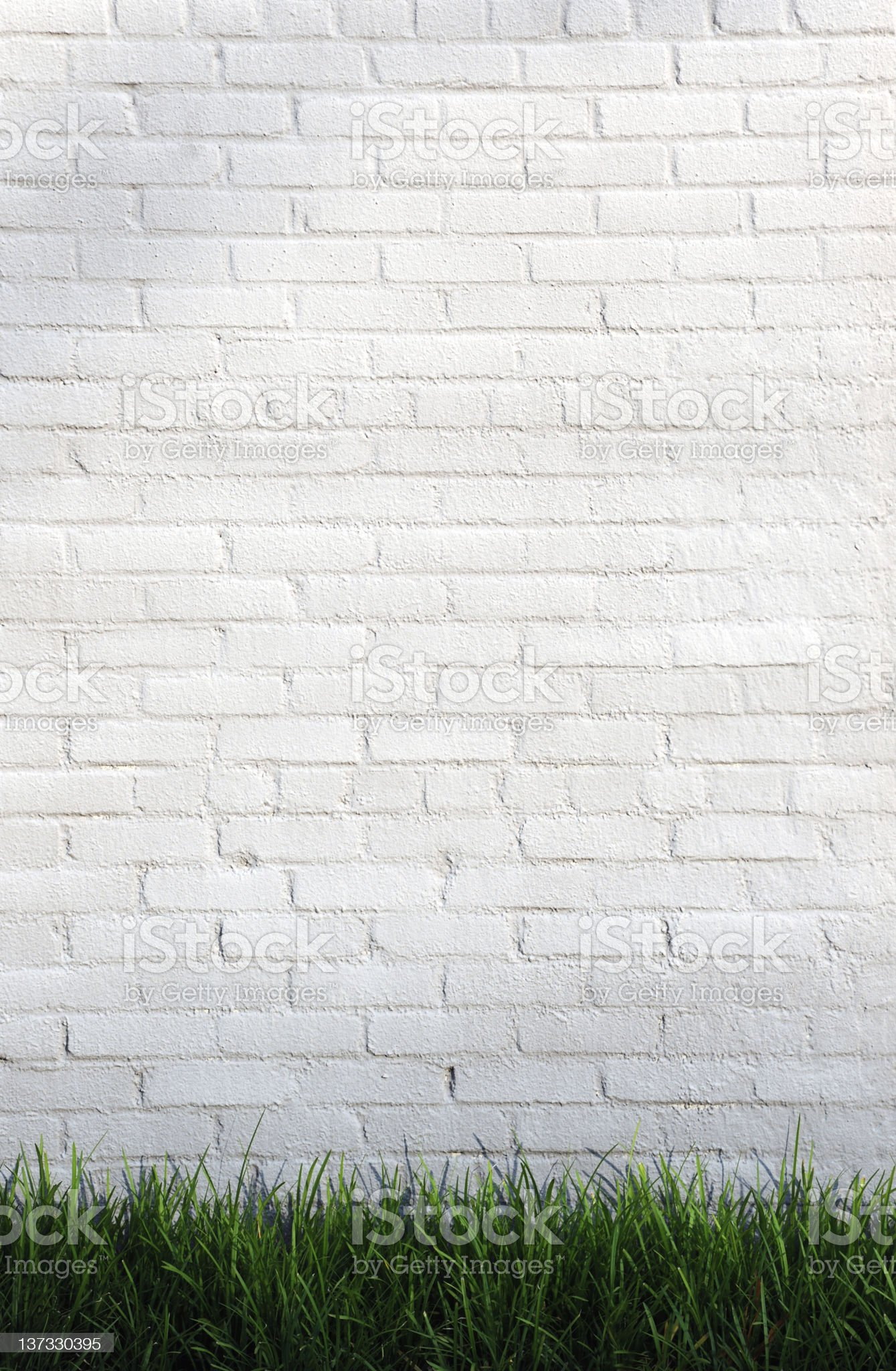 Wall with Grass royalty-free stock photo
