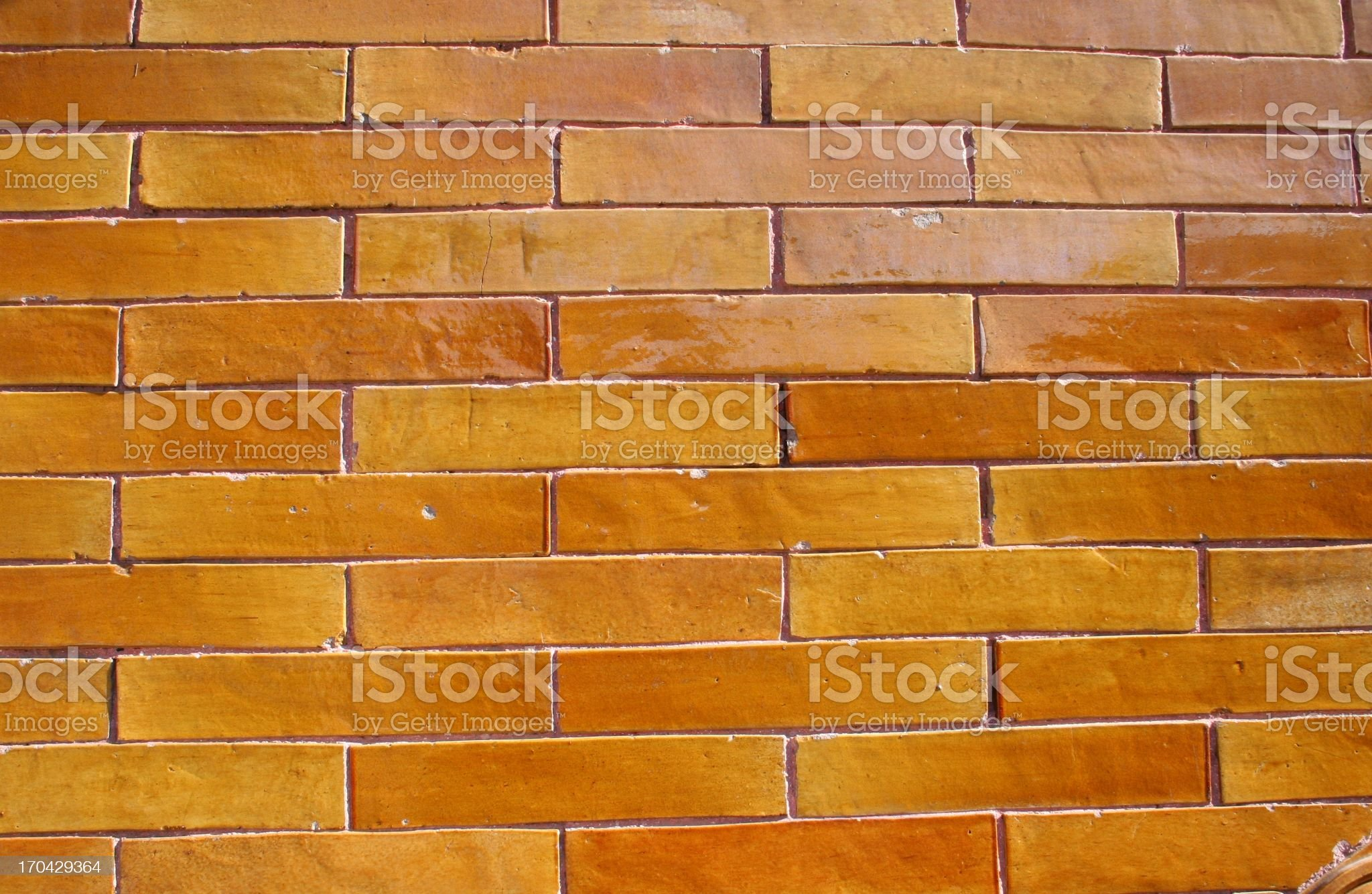 Wall with Yellow Tiles at Imperial Garden, Forbidden City, China royalty-free stock photo