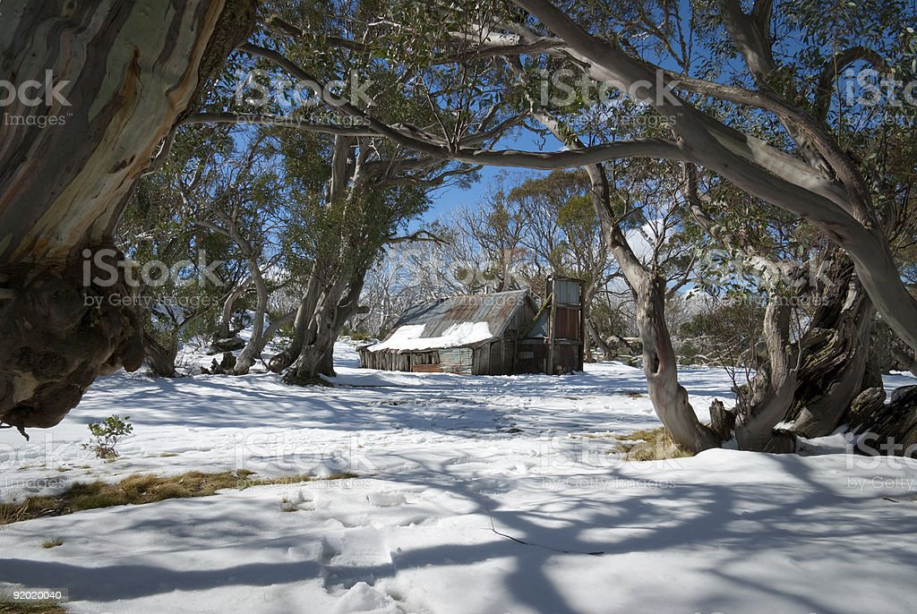 Wallaces Hut viewed through snow gums, Victoria, Australia stock photo