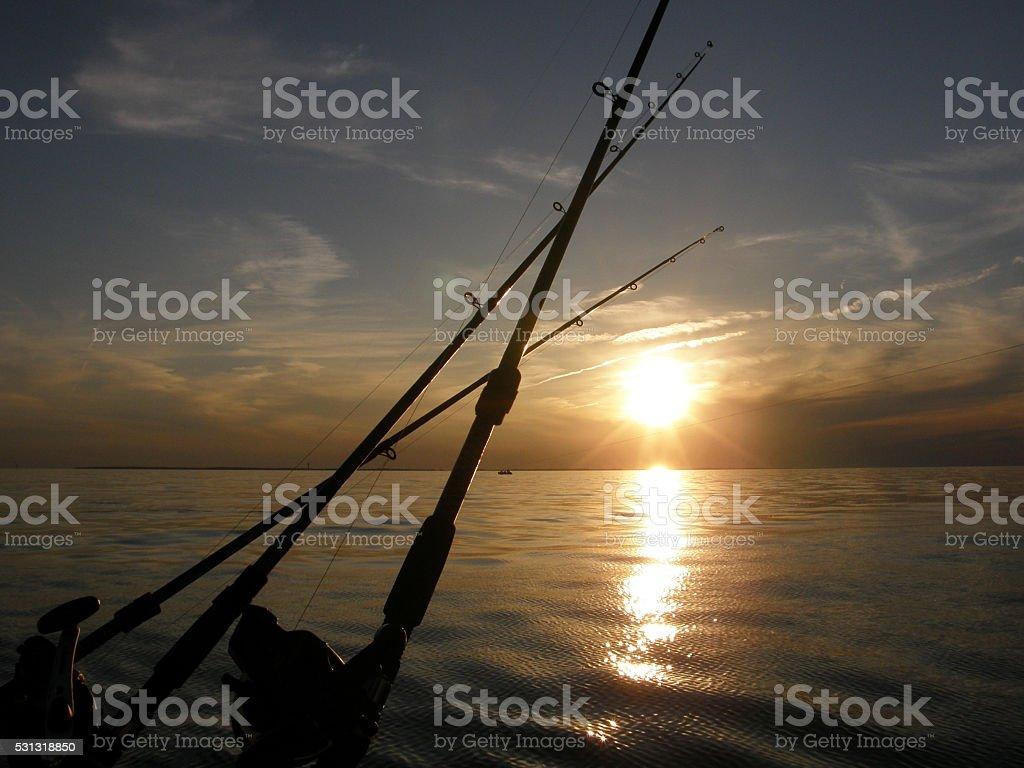 Walleye Fishing on Lake Erie stock photo