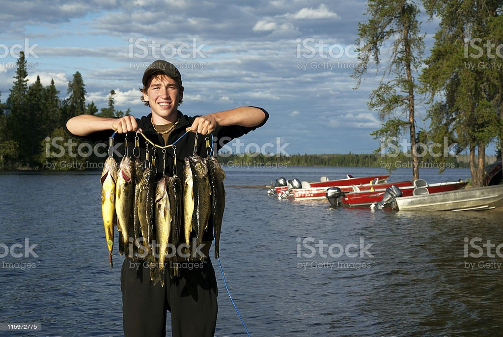 Walleye in Canada stock photo