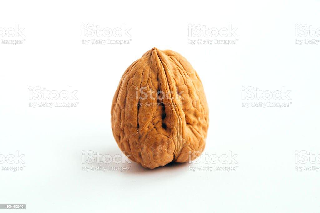 Wallnut stock photo