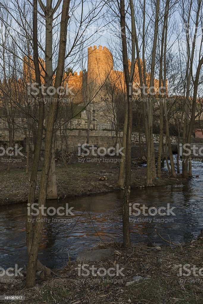 Walls of Avila (Spain) With its Reflection royalty-free stock photo