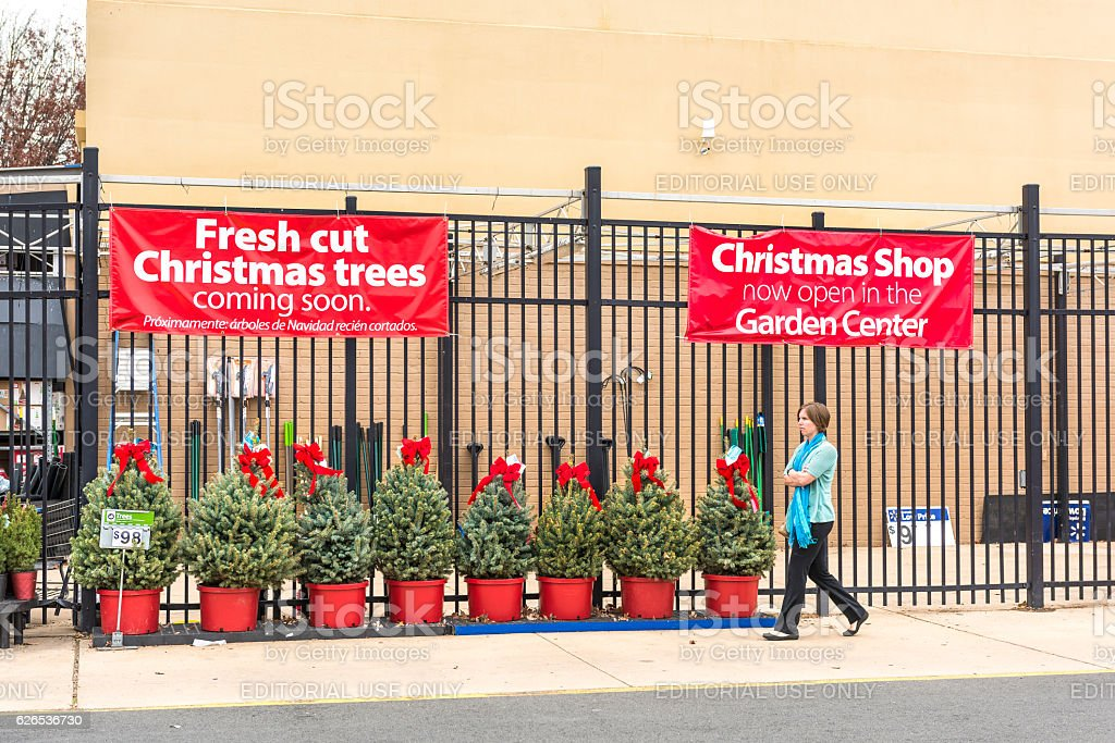 Walmart store facade with holiday Christmas trees on display stock photo