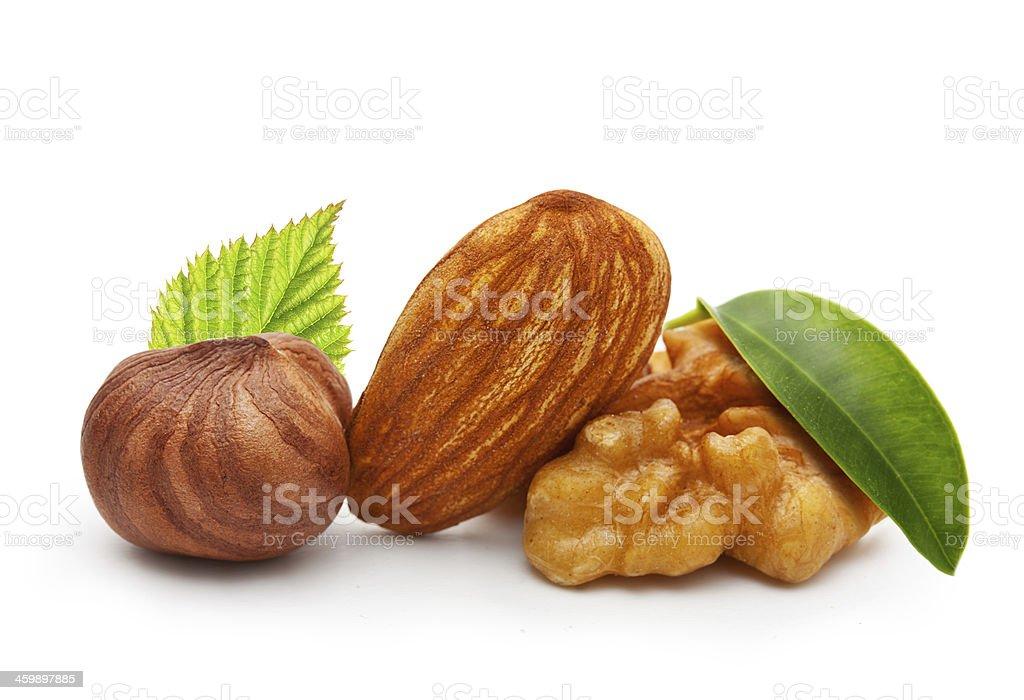 Walnut, almond nut, and hazelnut royalty-free stock photo