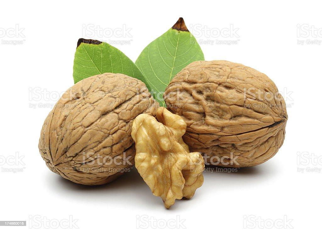 Walnut group royalty-free stock photo