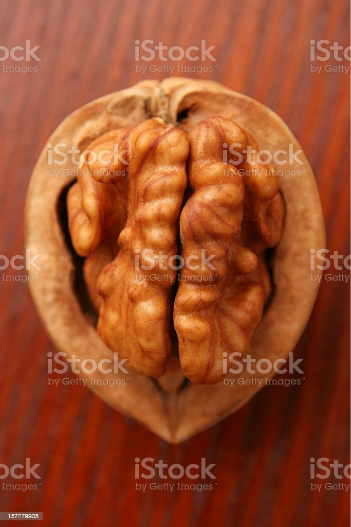 Walnut half royalty-free stock photo