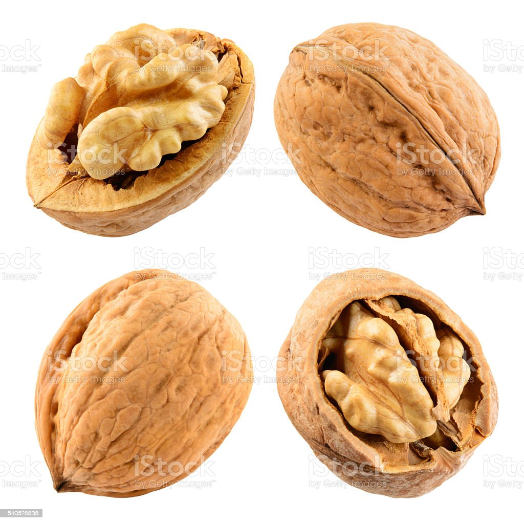 Walnut isolated on the white. With clipping path. Collection. stock photo