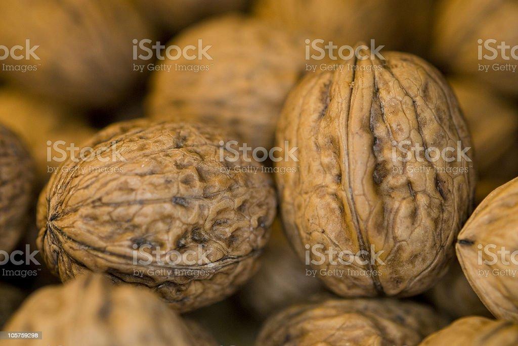 Walnut macro stock photo