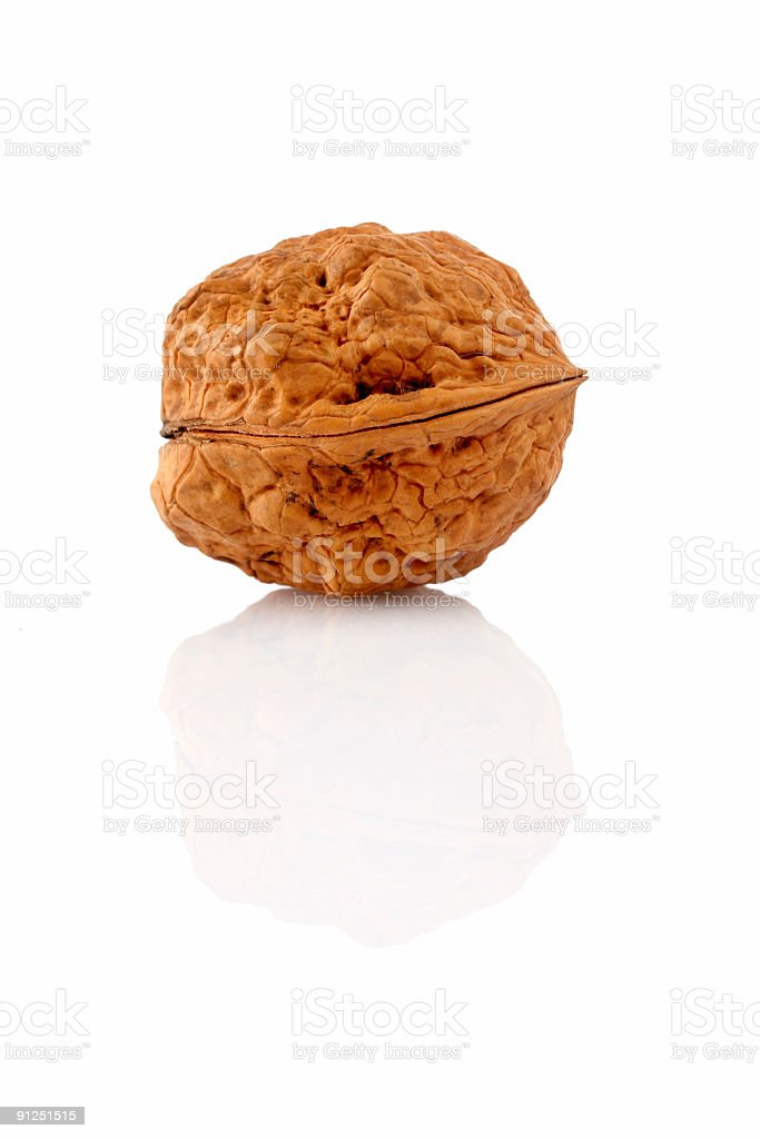 Walnut on reflected background royalty-free stock photo