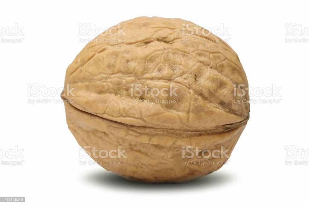 Walnut (isolated) royalty-free stock photo