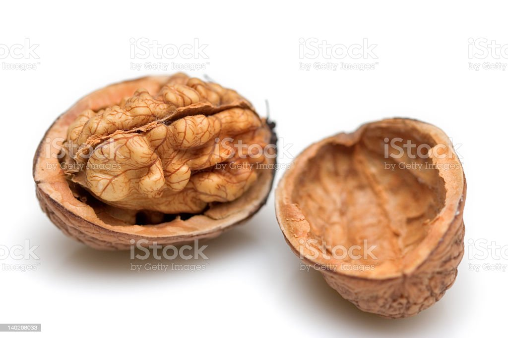 Walnut shell cracked in half to show nut royalty-free stock photo