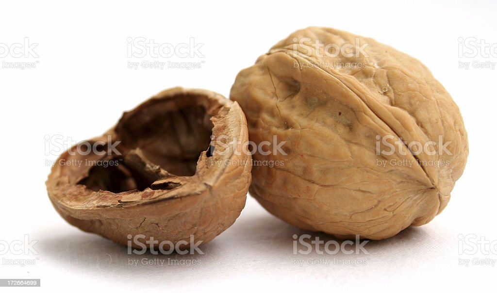 Walnut shell stock photo
