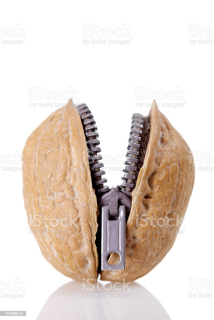 Walnut Zipper stock photo
