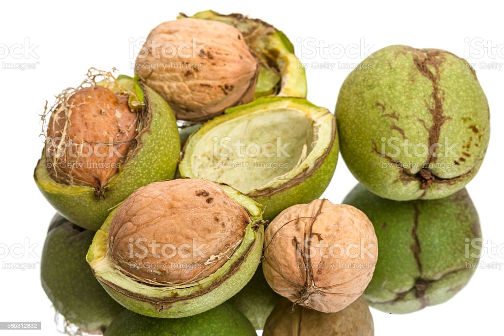 Walnuts and green shell stock photo