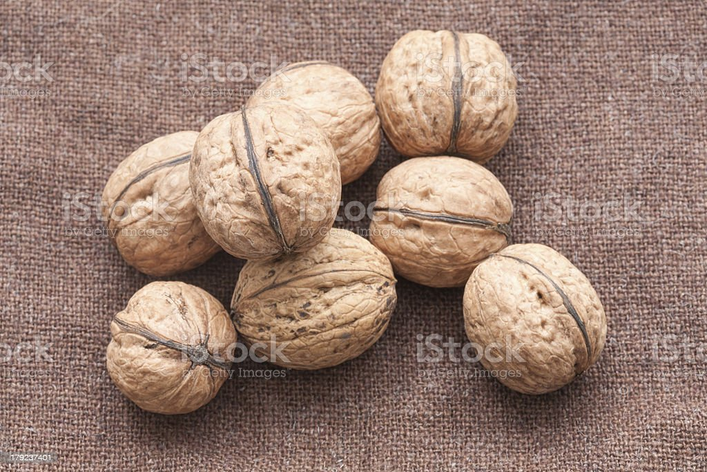 walnuts close up on the burlap background royalty-free stock photo