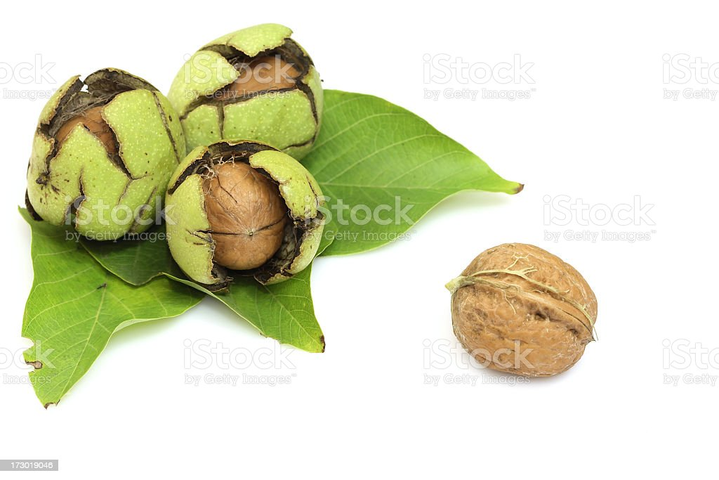 Walnuts composition royalty-free stock photo