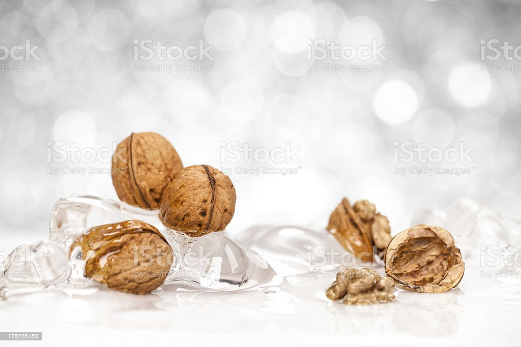 Walnuts in Ice royalty-free stock photo