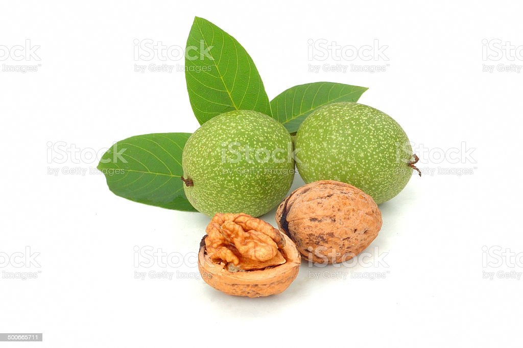 Walnuts  isolated on white stock photo