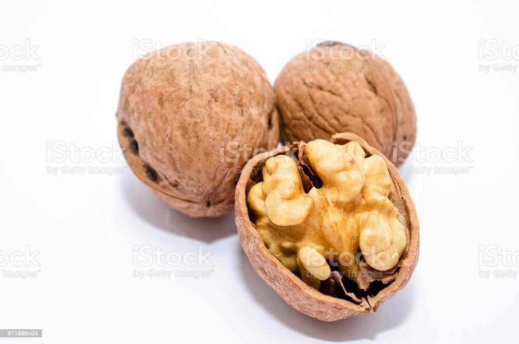 Walnuts isolated royalty-free stock photo