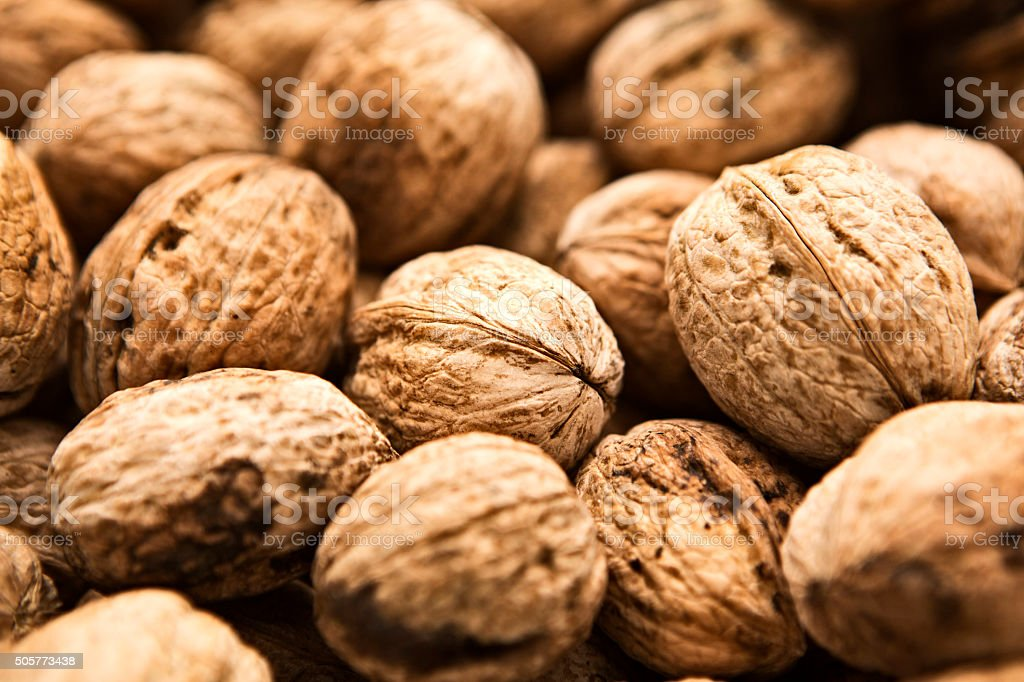 Walnuts stock photo