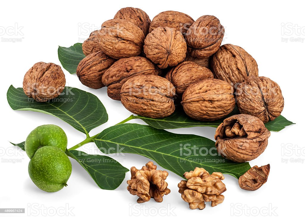 Walnuts pile stock photo