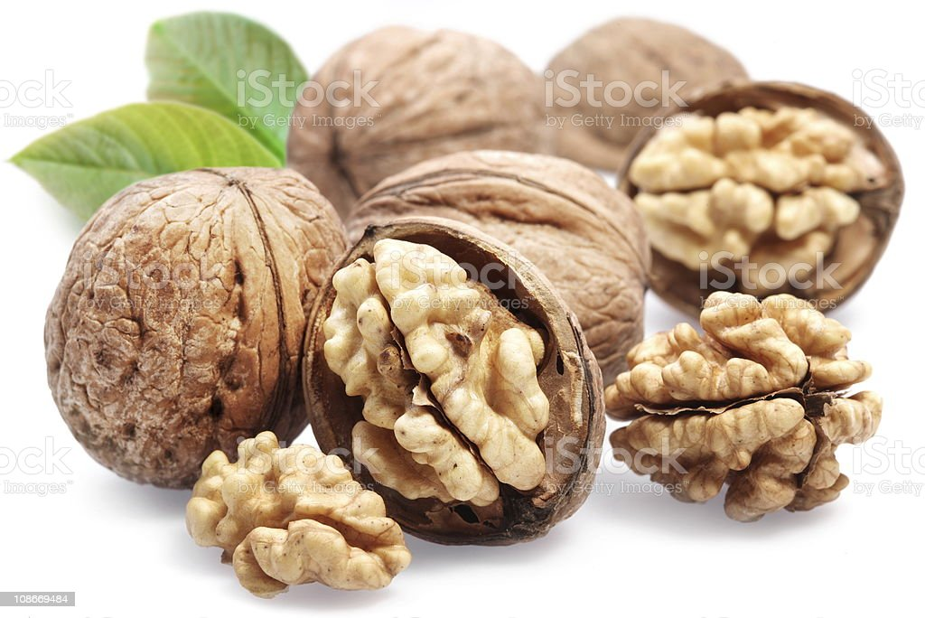 Walnuts with leaf. stock photo