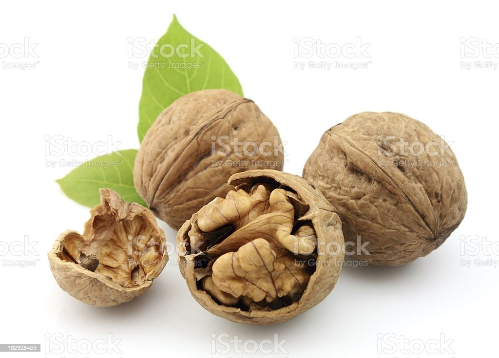 Walnuts with leafs royalty-free stock photo