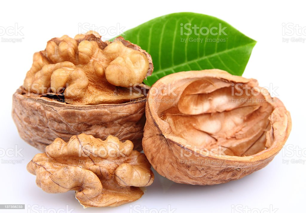 Walnuts with leaves royalty-free stock photo