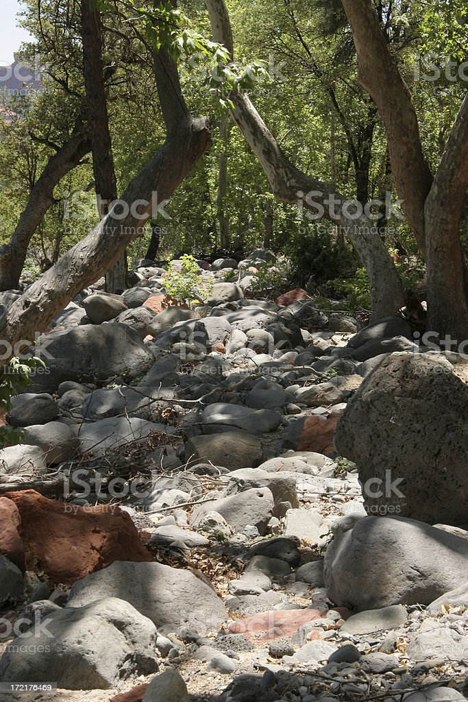 Wandering Through An Old Creek Bed stock photo