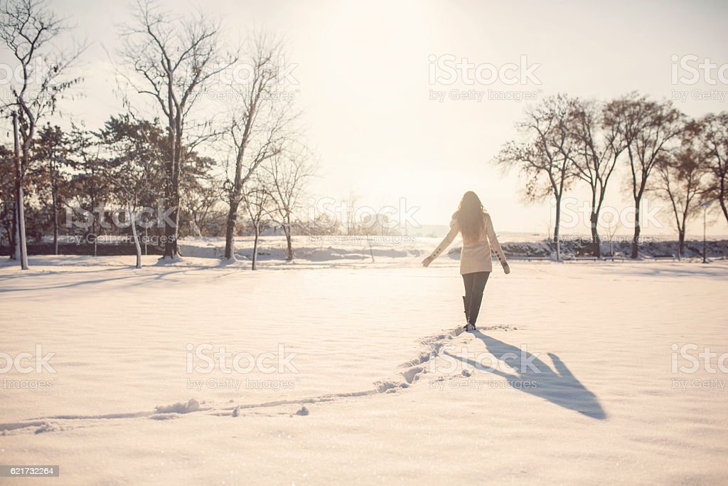 Wandering through the snow stock photo